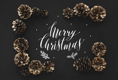 Merry Christmas from Cheval of Willerby